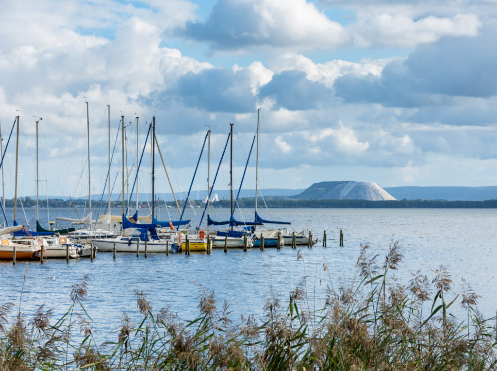 Bootsanleger mit Segelbooten am Ufer des Steinhuder Meeres